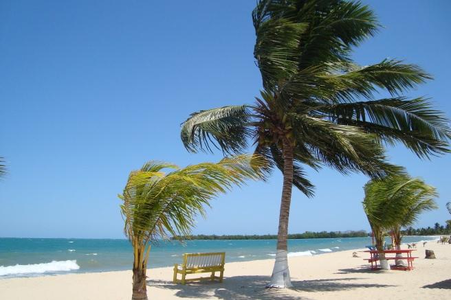 Strand in Placencia